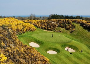 dublin + druids glen resort - golf let *****